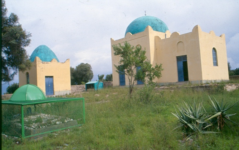 Hallal and Denakil Tour Package for 7 Days