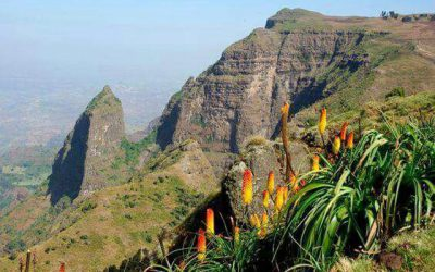 North Historic Ethiopia Tour Package for 12 Days
